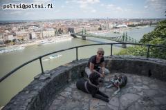 Budapestissa